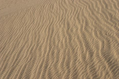 Lines of Sand Grain Waves Royalty Free Stock Image