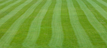 Lines of soccer field Royalty Free Stock Photo
