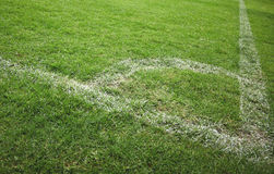 Lines on soccer field. White line on a soccer field grass Stock Photography