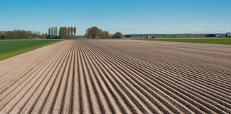 Lines of soil in a Dutch rural landscape Stock Photos