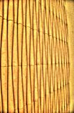 lines vertical Royaltyfri Bild