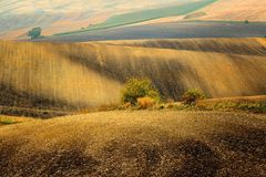 Lines and waves in the detail look over Moravian fields. Stock Images