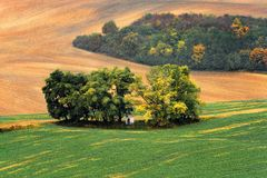 Lines and waves in the detail look over Moravian fields. Stock Photo