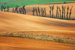 Lines and waves in the detail look over Moravian fields. Royalty Free Stock Images