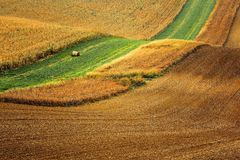 Lines and waves in the detail look over Moravian fields. Stock Photos
