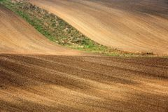 Lines and waves in the detail look over Moravian fields. Royalty Free Stock Photos