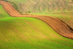 Lines and waves in the detail look over Moravian fields. Royalty Free Stock Photo