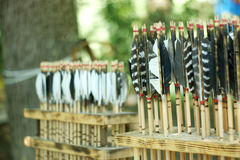 Lineup av gamla pilar för tappningfjäderbågskytte Arkivfoto