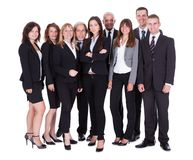 Lineup of business executives or partners Royalty Free Stock Photo