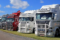 Lineup of Scania Show Trucks Royalty Free Stock Photography