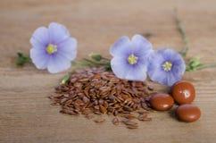Linfrö, skönhetblomman och preventivpillerar woooden på bakgrund Arkivfoton