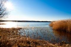 Lingüeta na costa de um lago Imagem de Stock Royalty Free
