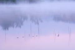 Lingüetas e reflexões do nascer do sol Imagem de Stock Royalty Free
