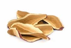 Ling Zhi Mushroom. Foto de Stock Royalty Free