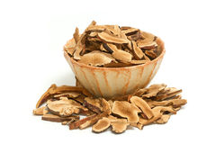 Ling Zhi Mushroom seco, cogumelo de Reishi imagens de stock royalty free