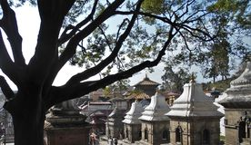 Lingams w Pashupatinath świątyni w Kathmandu fotografia royalty free