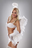 Lingerie angel Stock Image