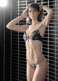 Lingerie dressed woman Stock Photo
