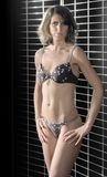 Lingerie dressed woman Royalty Free Stock Photos
