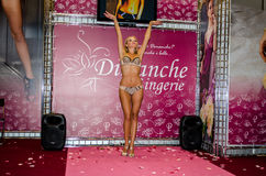 Lingerie-Expo 2013 in Moscow Royalty Free Stock Photo
