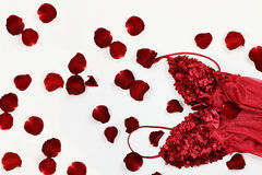 Lingerie and Rose Petals Stock Photography