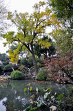 Lingering garden in suzhou Stock Photos