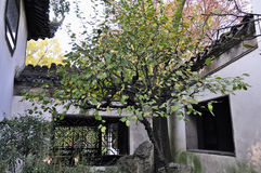 Lingering garden in suzhou Royalty Free Stock Images