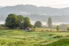 Lingering mist in British countryside. Stock Images