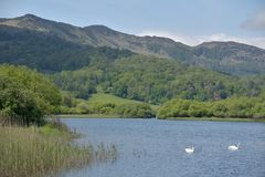 Lingmoor Fell and Elterwater Stock Photography