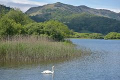 Lingmoor Fell and Elterwater Royalty Free Stock Photo