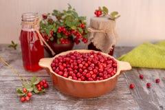 Lingonberries e produtos do lingonberry imagem de stock