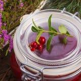 Lingonberries Stock Image