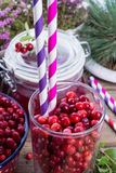 Lingonberries Royalty Free Stock Photography