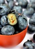 lingonberry конца голубики предпосылки вверх Стоковая Фотография RF