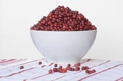 lingonberry шара Стоковая Фотография