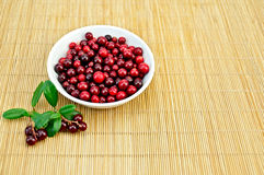 Lingonberry in a cup on a bamboo mat Stock Photos