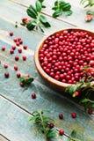 Lingonberry da airela, partridgeberry, foxberry na bacia de madeira na tabela rústica do vintage Imagens de Stock