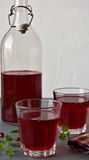 Lingonberry drink Stock Images
