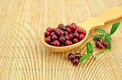 Lingonberry en una cuchara en una estera de bambú Fotos de archivo