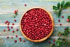 Lingonberry fresco maduro da airela, partridgeberry, foxberry na bacia de madeira na tabela rústica do vintage de cima de Imagem de Stock Royalty Free