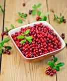 Lingonberry maturo in ciotola a bordo Fotografie Stock Libere da Diritti