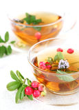 Lingonberry tea royalty free stock image