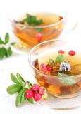 Lingonberry tea Royalty Free Stock Image