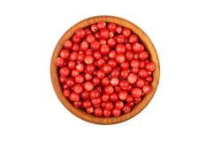 Lingonberry & x28;Vaccinium vitis-idaea& x29; Royalty Free Stock Photos