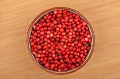 Lingonberry & x28;Vaccinium vitis-idaea& x29; Stock Image