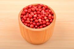 Lingonberry & x28;Vaccinium vitis-idaea& x29; Stock Photo