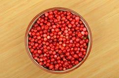 Lingonberry & x28;Vaccinium vitis-idaea& x29; Royalty Free Stock Photography