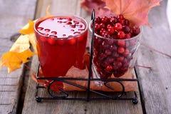 Lingonfruktsaft och bär Royaltyfri Foto