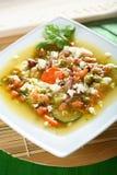 Lingot avec des légumes Photo stock