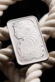 Lingotto del platino Immagine Stock